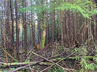 Photo 10: E-460 Quatsino Rd in : NI Port Hardy Land for sale (North Island)  : MLS®# 862757