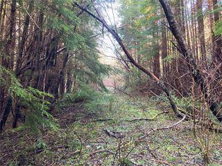 Photo 13: E-460 Quatsino Rd in : NI Port Hardy Land for sale (North Island)  : MLS®# 862757