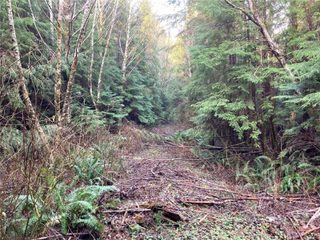 Photo 8: E-460 Quatsino Rd in : NI Port Hardy Land for sale (North Island)  : MLS®# 862757