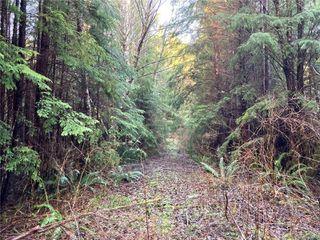 Photo 11: E-460 Quatsino Rd in : NI Port Hardy Land for sale (North Island)  : MLS®# 862757
