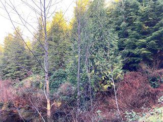Photo 3: E-460 Quatsino Rd in : NI Port Hardy Land for sale (North Island)  : MLS®# 862757