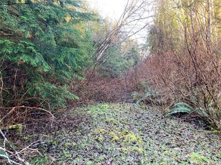 Photo 14: E-460 Quatsino Rd in : NI Port Hardy Land for sale (North Island)  : MLS®# 862757