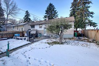 Photo 27: 2502 26 Street SE in Calgary: Southview Detached for sale : MLS®# A1059886