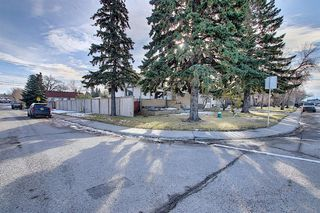 Photo 33: 2502 26 Street SE in Calgary: Southview Detached for sale : MLS®# A1059886