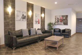 Photo 26: 133 7825 71 Street in Edmonton: Zone 17 Condo for sale : MLS®# E4182963