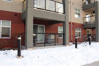 Photo 36: 133 7825 71 Street in Edmonton: Zone 17 Condo for sale : MLS®# E4182963
