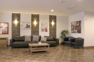 Photo 25: 133 7825 71 Street in Edmonton: Zone 17 Condo for sale : MLS®# E4182963