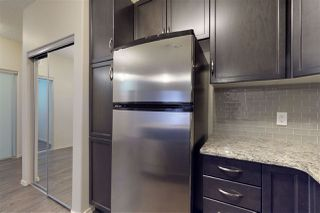 Photo 9: 133 7825 71 Street in Edmonton: Zone 17 Condo for sale : MLS®# E4182963