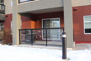Photo 33: 133 7825 71 Street in Edmonton: Zone 17 Condo for sale : MLS®# E4182963