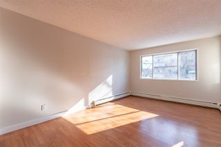 Photo 13: 205 14916 26 Street NW in Edmonton: Zone 35 Condo for sale : MLS®# E4192395