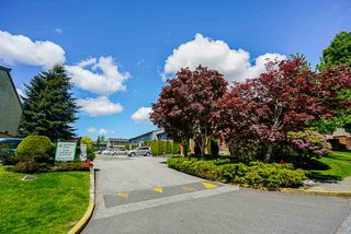 """Photo 31: 111 10748 GUILDFORD Drive in Surrey: Guildford Townhouse for sale in """"GUILDFORD CLOSE"""" (North Surrey)  : MLS®# R2457546"""