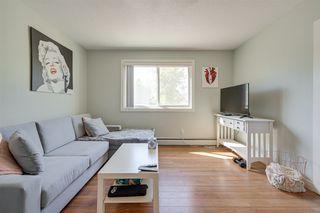 Photo 13: 10 10812 115 Street NW in Edmonton: Zone 08 Condo for sale : MLS®# E4199389