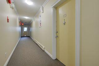 Photo 7: 10 10812 115 Street NW in Edmonton: Zone 08 Condo for sale : MLS®# E4199389