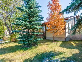 Photo 2: 51 Templewood Mews NE in Calgary: Temple Detached for sale : MLS®# A1039525