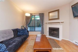 Photo 5: 105 1655 Begbie Street in VICTORIA: Vi Fernwood Condo Apartment for sale (Victoria)  : MLS®# 419079