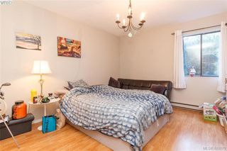 Photo 11: 105 1655 Begbie Street in VICTORIA: Vi Fernwood Condo Apartment for sale (Victoria)  : MLS®# 419079