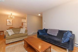 Photo 6: 105 1655 Begbie Street in VICTORIA: Vi Fernwood Condo Apartment for sale (Victoria)  : MLS®# 419079