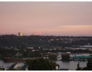 """Photo 9: 501 320 ROYAL Avenue in New_Westminster: Downtown NW Condo for sale in """"PEPPERTREE"""" (New Westminster)  : MLS®# V781302"""