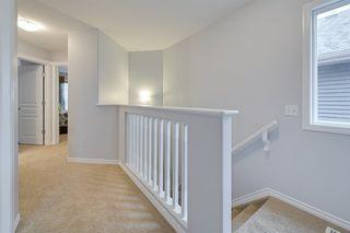 Photo 21: 4613 CRABAPPLE Run in Edmonton: Zone 53 House for sale : MLS®# E4209630