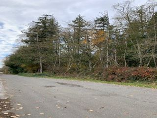 Photo 5: LT.13 20 AVENUE in Langley: Campbell Valley Land for sale : MLS®# R2515404