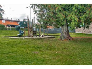 "Photo 37: 243A EVERGREEN Drive in Port Moody: College Park PM Townhouse for sale in ""THE EVERGREENS"" : MLS®# R2517794"