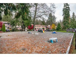 "Photo 36: 243A EVERGREEN Drive in Port Moody: College Park PM Townhouse for sale in ""THE EVERGREENS"" : MLS®# R2517794"