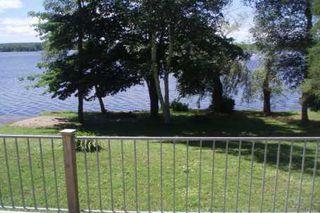 Photo 4: 27 Hillcrest Avenue in Kawartha L: House (Bungalow) for sale (X22: ARGYLE)  : MLS®# X1423183