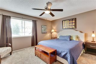 Photo 16: 955 PRESTWICK Circle SE in Calgary: McKenzie Towne Detached for sale : MLS®# C4257598