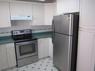 Photo 6: 3907 41 Avenue in Edmonton: Zone 29 House for sale : MLS®# E4166839