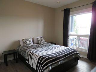 Photo 14: 210 10518 113 Street in Edmonton: Zone 08 Condo for sale : MLS®# E4167591