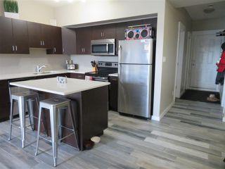Photo 2: 210 10518 113 Street in Edmonton: Zone 08 Condo for sale : MLS®# E4167591