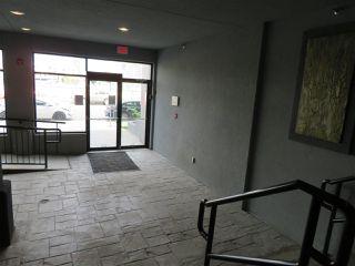 Photo 26: 210 10518 113 Street in Edmonton: Zone 08 Condo for sale : MLS®# E4167591