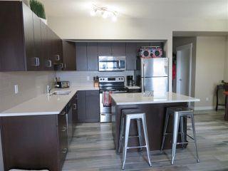 Photo 7: 210 10518 113 Street in Edmonton: Zone 08 Condo for sale : MLS®# E4167591