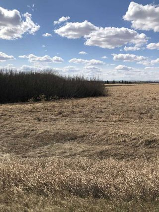 Photo 1: Highway 36: Brosseau Vacant Lot for sale : MLS®# E4196146