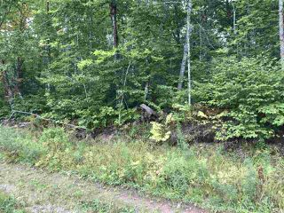 Photo 5: Lot Westchester Road in Westchester Valley: 102N-North Of Hwy 104 Vacant Land for sale (Northern Region)  : MLS®# 202017457
