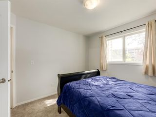 Photo 16: 4119 4975 130 Avenue SE in Calgary: McKenzie Towne Apartment for sale : MLS®# A1036210