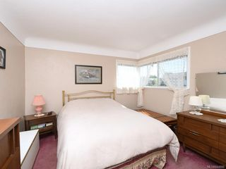 Photo 9: 1310 May St in Victoria: Vi Fairfield West Single Family Detached for sale : MLS®# 844886