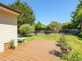 Photo 21: 1310 May St in Victoria: Vi Fairfield West Single Family Detached for sale : MLS®# 844886