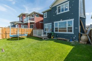 Photo 28: 191 Redstone Heights NE in Calgary: Redstone Detached for sale : MLS®# A1023196