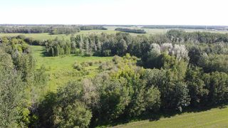 Photo 19: 26524 SH 627: Rural Parkland County Rural Land/Vacant Lot for sale : MLS®# E4202664