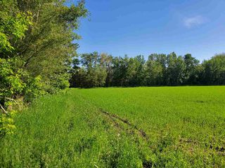 Photo 4: 26524 SH 627: Rural Parkland County Rural Land/Vacant Lot for sale : MLS®# E4202664
