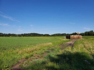 Photo 5: 26524 SH 627: Rural Parkland County Rural Land/Vacant Lot for sale : MLS®# E4202664