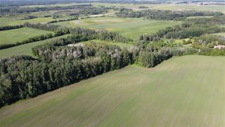 Photo 8: 26524 SH 627: Rural Parkland County Rural Land/Vacant Lot for sale : MLS®# E4202664