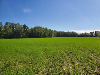 Photo 3: 26524 SH 627: Rural Parkland County Rural Land/Vacant Lot for sale : MLS®# E4202664