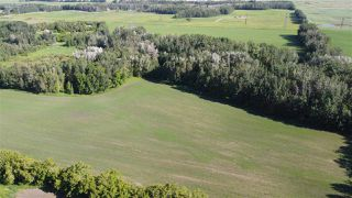 Photo 7: 26524 SH 627: Rural Parkland County Rural Land/Vacant Lot for sale : MLS®# E4202664