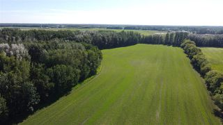 Photo 18: 26524 SH 627: Rural Parkland County Rural Land/Vacant Lot for sale : MLS®# E4202664