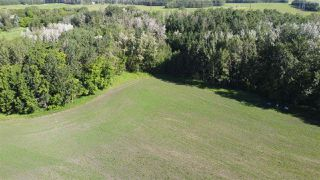 Photo 22: 26524 SH 627: Rural Parkland County Rural Land/Vacant Lot for sale : MLS®# E4202664