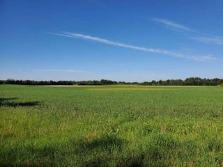 Photo 6: 26524 SH 627: Rural Parkland County Rural Land/Vacant Lot for sale : MLS®# E4202664