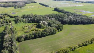Photo 15: 26524 SH 627: Rural Parkland County Rural Land/Vacant Lot for sale : MLS®# E4202664