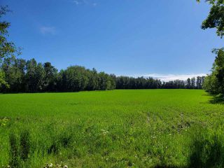 Photo 2: 26524 SH 627: Rural Parkland County Rural Land/Vacant Lot for sale : MLS®# E4202664